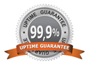99.9% Uptime Guarantee